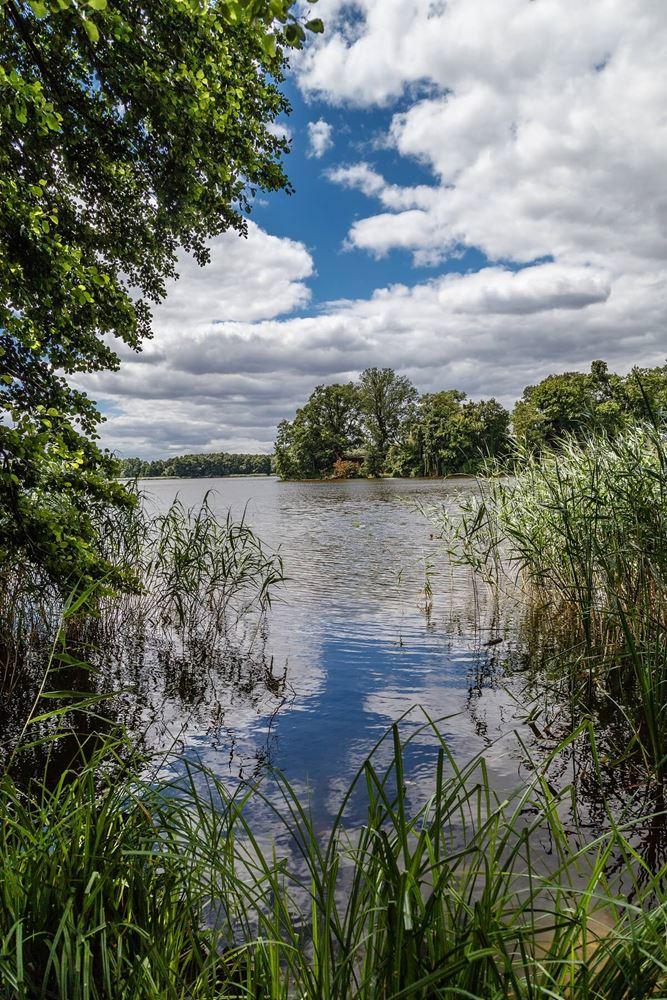 Jezioro Raczyńskie - wyspa Edwarda w tle