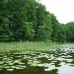 Jezioro jeziorak - ciekawe miejsca w Polsce