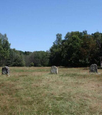 cmentarz koni