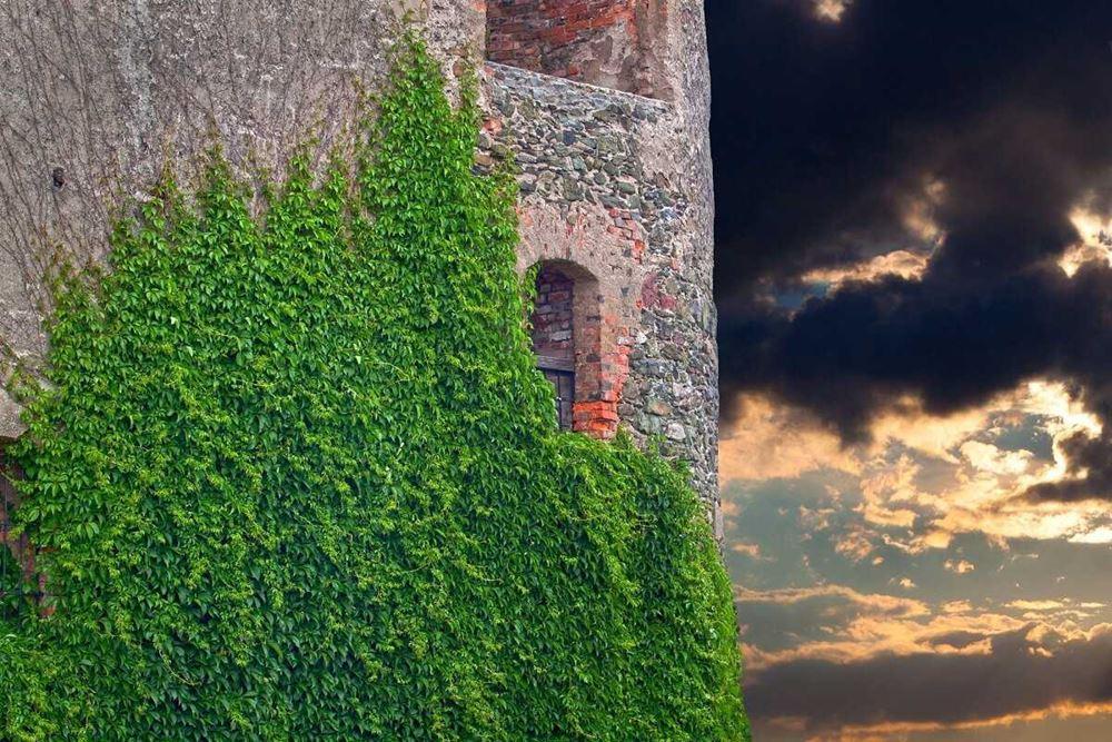 zamek bolków - widok na wieżę - zamek w bolkowie