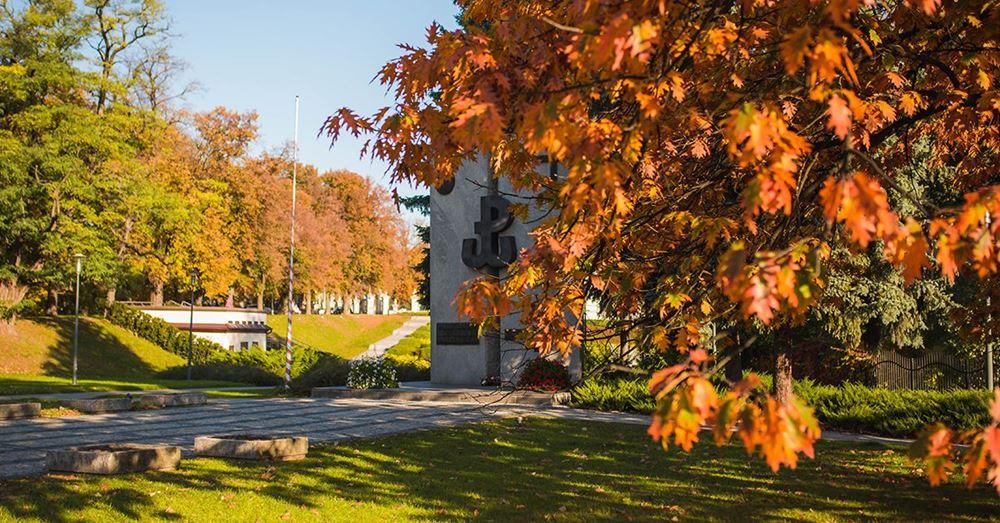 Pomnik Żołnierzy Armii Krajowej Podokręgu Rzeszów