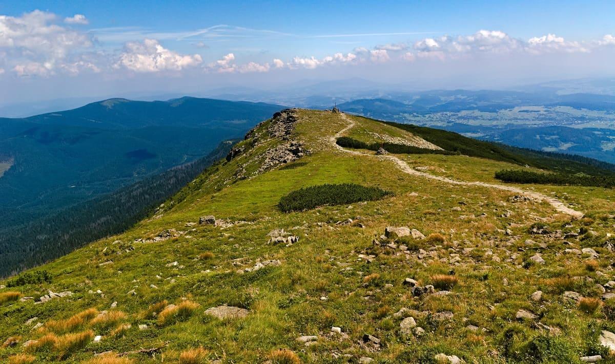 Babia Góra - Latem
