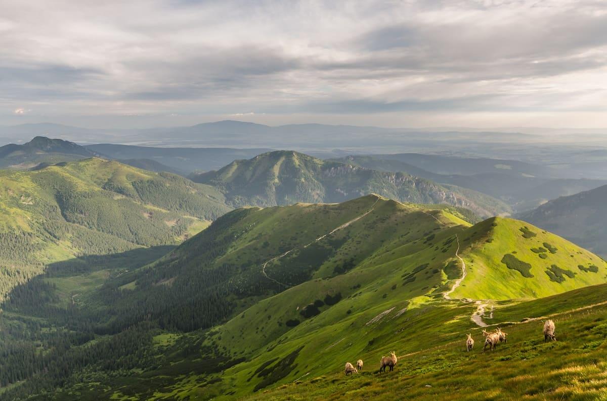 Widok z Wołowca w kierunku Smutnej doliny z widocznym szlakiem i cieniami chmur na zboczach.