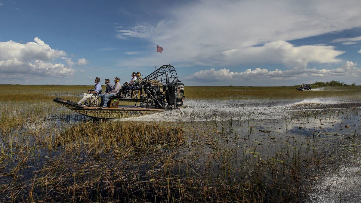 Park Narodowy Everglades